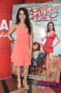 Bollywood actress Amisha Patel,choreographer Shiamak Davar,actor Neil Nitin Mukesh and    director Susi Ganeshposes during the promotion  upcoming film Shortcut Romeo and the launch in Mumbai on 01 June  2013(Photo:IANS)